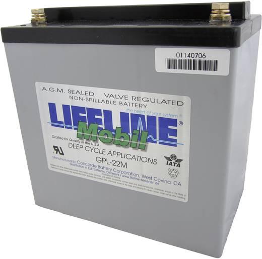 Bleiakku 12 V 55 Ah LifeLine GPL22M 12V 55Ah GPL22M Blei-Vlies (AGM) (B x H x T) 228 x 224 x 138 mm M8-Schraubanschluss