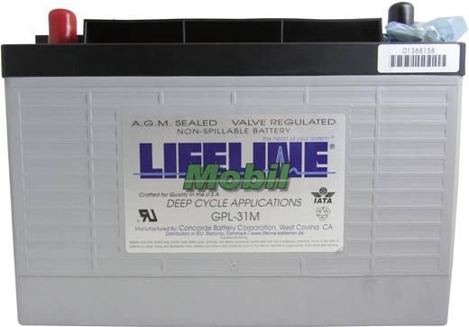 Bleiakku 12 V 105 Ah LifeLine GPL31M 12V 125Ah GPL31M Blei-Vlies (AGM) (B x H x T) 329 x 236 x 171 mm M8-Schraubanschlus