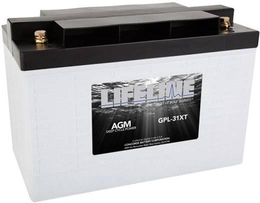 Bleiakku 12 V 125 Ah LifeLine GPL31XT 12V 125Ah GPL31XT Blei-Vlies (AGM) (B x H x T) 328 x 236 x 172 mm M8-Schraubanschl
