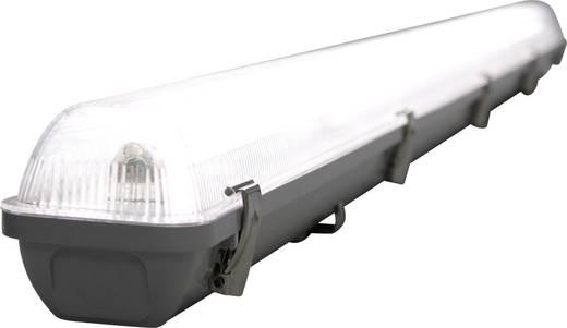 Narva Feuchtraum-Wannenleuchte LED 40 W Tageslicht-Weiß Grau