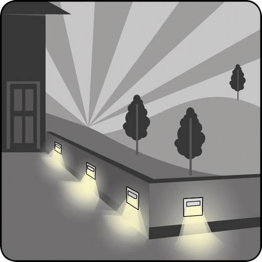 LED-Einbauleuchte 1.6 W Warm-Weiß SKOFF TANGO SHORT K/H MS-TAN-K-H-1-PL-00-01 Edelstahl