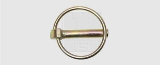 Klappstecker Stahl verzinkt 10 St. SWG 472 10 55
