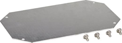 Montageplatte (L x B) 300 mm x 200 mm Stahlblech Fibox 8120731 1 St.