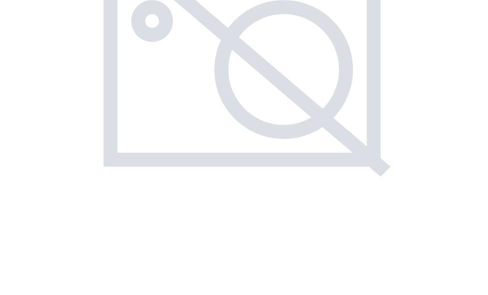 Polarlite LBA-52-001 Acryl-Figur