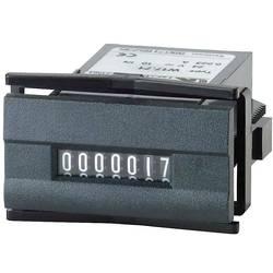 Čítač impulsů Kübler W 17.50, 24 V/DC