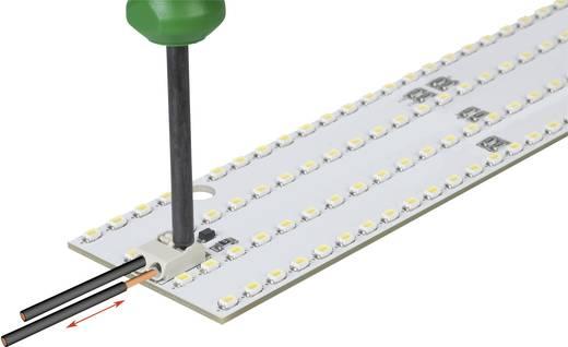 SMD-Leiterplattenklemme 1.50 mm² Polzahl 3 2061-603/998-404 WAGO Weiß 1 St.