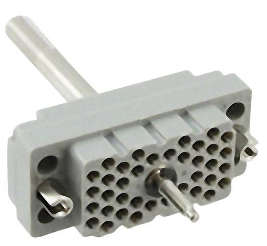 Buchseneinsatz Serie (Steckverbinder EDAC) 516 516-038-000-401 EDAC Gesamtpolzahl 38 1 St.