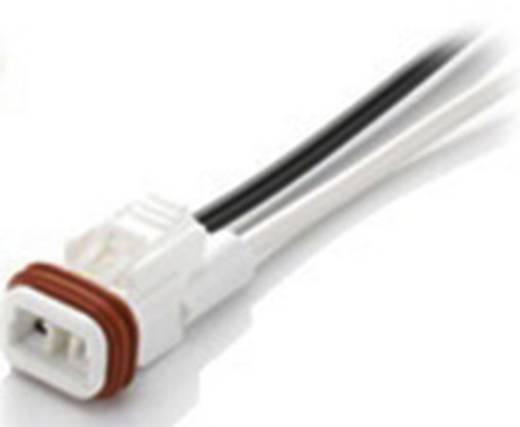EDAC 570-002-744-900 Rundstecker Buchse, gerade Serie (Rundsteckverbinder): 570 Gesamtpolzahl: 2 1 St.