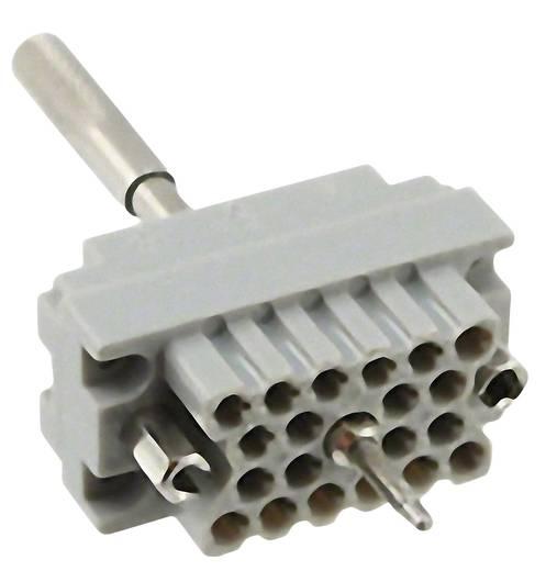 Buchseneinsatz Serie (Steckverbinder EDAC) 516 516-020-000-401 EDAC Gesamtpolzahl 20 1 St.