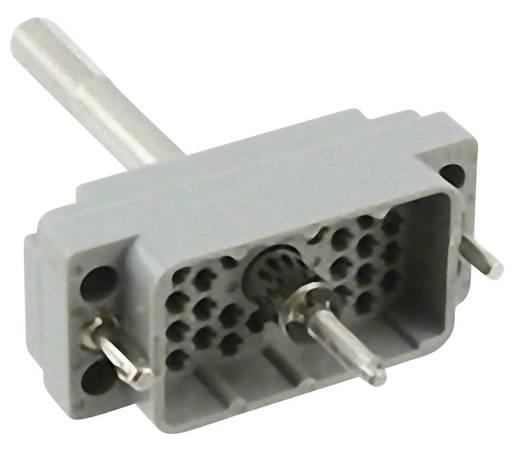 Stifteinsatz Serie (Steckverbinder EDAC) 516 516-038-000-301 EDAC Gesamtpolzahl 38 1 St.