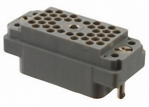 Stifteinsatz Serie (Steckverbinder EDAC) 516 516-038-000-302 EDAC Gesamtpolzahl 38 1 St.