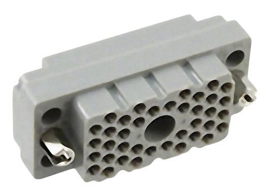 Buchseneinsatz Serie (Steckverbinder EDAC) 516 516-038-000-402 EDAC Gesamtpolzahl 38 1 St.