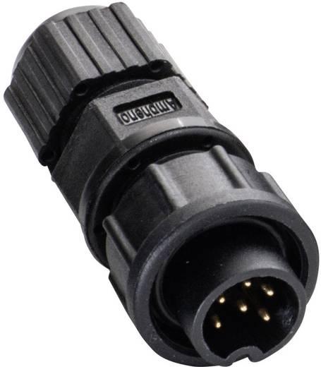 IP67-Steckverbinder Pole: 4 Mit Stiftkontakten 5 A 2660-0182-01 Amphenol LTW 1 St.