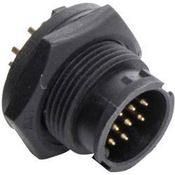 Image of Amphenol LTW 2660-0014-01 Rundstecker Stecker, Einbau vertikal Serie (Rundsteckverbinder): BD Gesamtpolzahl: 12 1 St.