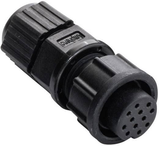 Amphenol LTW 2660-0162-01 Rundstecker Buchse, gerade Serie (Rundsteckverbinder): BD Gesamtpolzahl: 12 1 St.