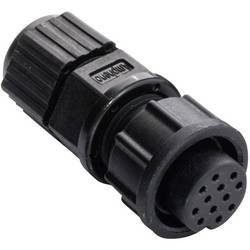 Image of Amphenol LTW 2660-0162-01 Rundstecker Buchse, gerade Serie (Rundsteckverbinder): BD Gesamtpolzahl: 12 1 St.