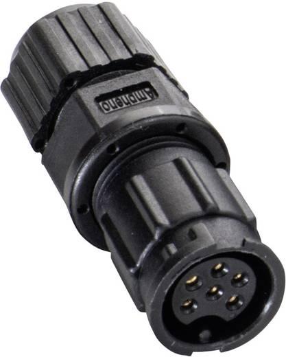 IP67-Steckverbinder Pole: 6 Mit Buchsenkontakten 5 A 2660-0065-01 Amphenol LTW 1 St.