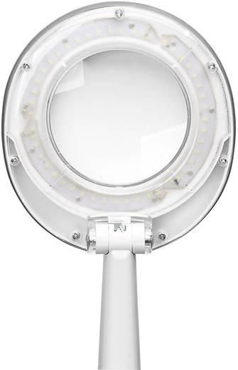 FixPoint 77452 LED Tisch Lupenleuchte mit 48 SMD-LED Arbeits-Radius: 30 cm
