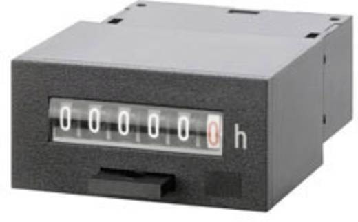 Kübler 106912 Betriebsstundenzähler 10 - 30 V/DC