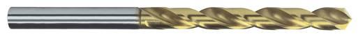 HSS Metall-Spiralbohrer 0.6 mm Exact 32504 Gesamtlänge 24 mm geschliffen, TiN DIN 338 Zylinderschaft 10 St.