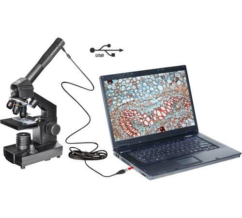 Mikroskopie im Unterricht