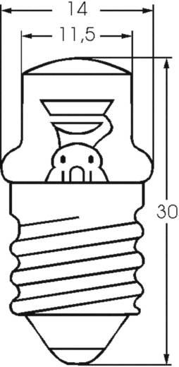 Glimmlampe 230 V E14 Klar 00032341 Barthelme 1 St.
