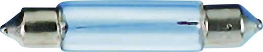 Barthelme 00311801 Soffittenlampe 18 V 1.80 W Sockel S5.5 Klar 1 St.