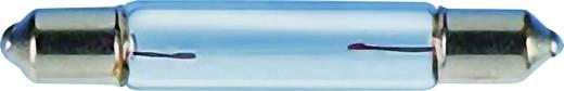 Soffittenlampe 24 V 3 W Sockel S5.5 Klar 00332403 Barthelme 1 St.