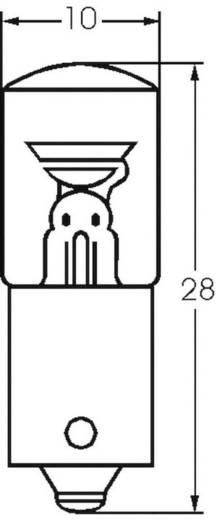 Glimmlampe 115 V BA9s Klar 00022030 Barthelme 1 St.