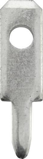 Steckzunge Steckbreite: 2.8 mm Steckdicke: 0.8 mm 180 ° Unisoliert Metall Vogt Verbindungstechnik 3779t.68 100 St.