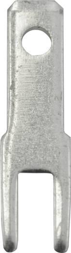 Steckzunge Steckbreite: 2.8 mm Steckdicke: 0.8 mm 180 ° Unisoliert Metall Vogt Verbindungstechnik 378508.68 100 St.