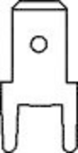 Steckzunge Steckbreite: 4.8 mm Steckdicke: 0.8 mm 180 ° Unisoliert Metall Vogt Verbindungstechnik 382508.28 100 St.
