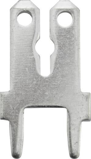 Steckzunge Steckbreite: 6.3 mm Steckdicke: 0.8 mm 180 ° Unisoliert Metall Vogt Verbindungstechnik 3866c.61 100 St.