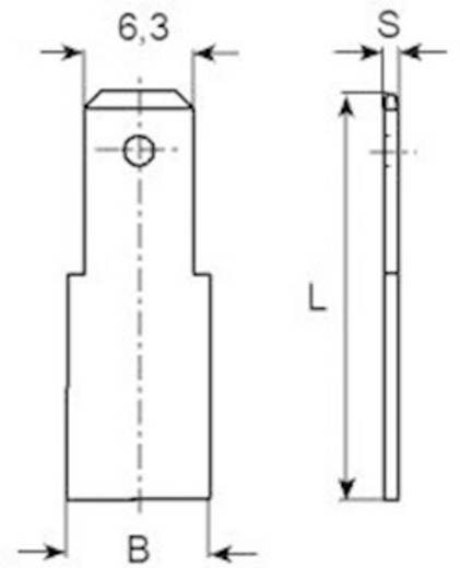 Steckzunge Steckbreite: 6.3 mm Steckdicke: 0.8 mm 180 ° Unisoliert Metall Vogt Verbindungstechnik 3840.80 1 St.
