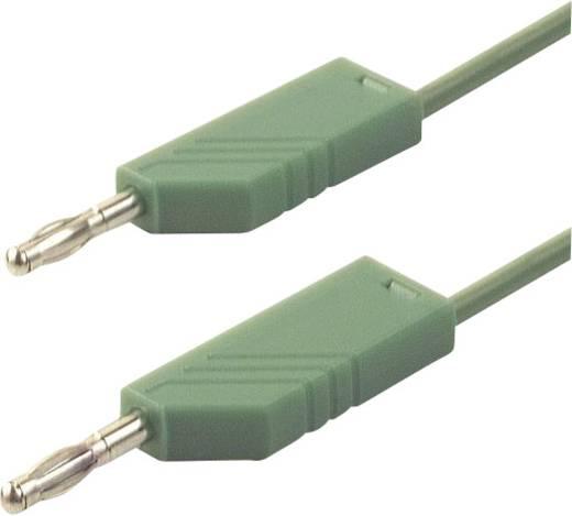 Messleitung [ Lamellenstecker 4 mm - Lamellenstecker 4 mm] 1 m Grün SKS Hirschmann CO MLN 100/2,5