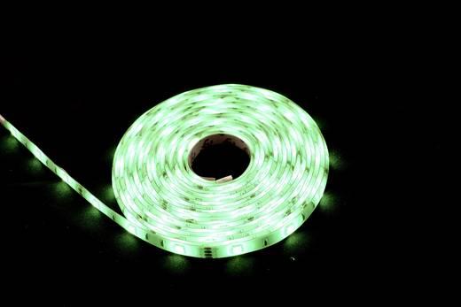 Renkforce LED-Streifen-Komplettset mit Stecker 230 V 500 cm RGB 5MAC862W