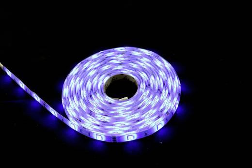 LED-Streifen-Komplettset mit Stecker 230 V 500 cm RGB Renkforce 5MAC862W