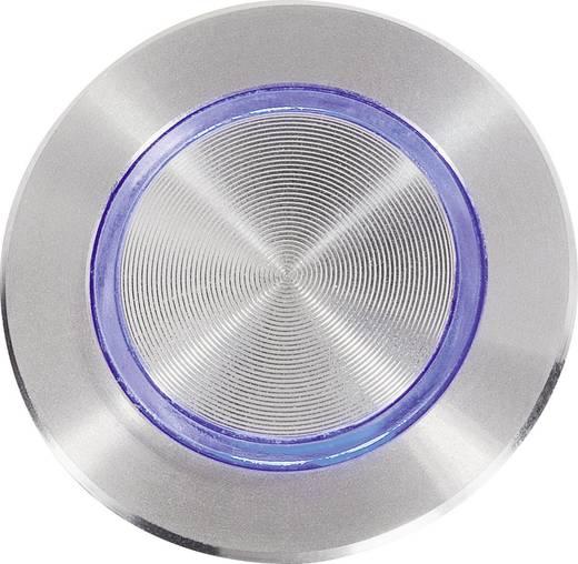 Klingeltaster beleuchtet, mit Piezo 1fach Renkforce 1227548 Edelstahl, Blau 24 V/0,3 A