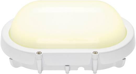 LED-Außenwandleuchte 11 W Warm-Weiß SLV Terang 229921 Weiß