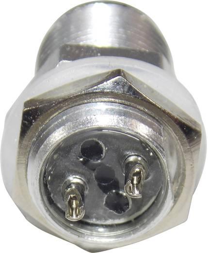 Wasserdichte Steckverbindung mit Einbaustecker Pole: 2 Buchse mit 100 cm Kabel am Ende 7 A 1229336 1 St.