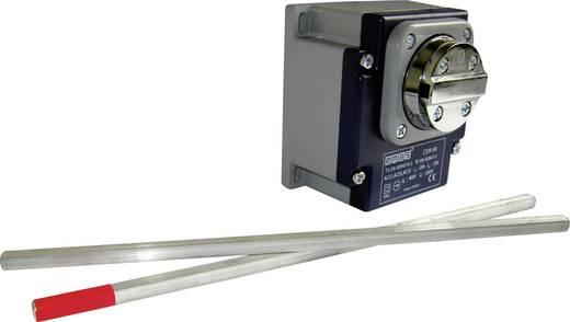 Endschalter 400 V/AC 20 A Drehhebel rastend EMAS CSM04 IP65 1 St.