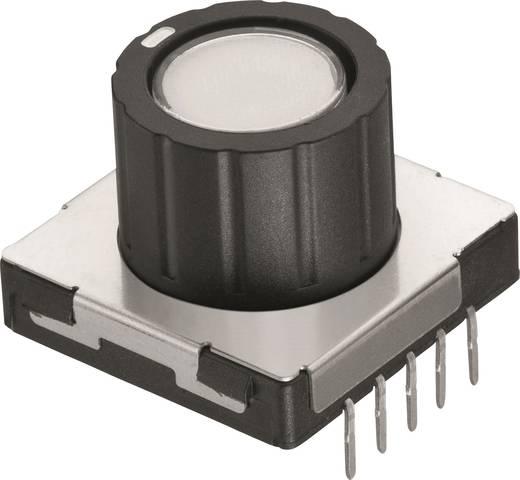 Drehschalter 12 V/DC 0.1 A Schaltpositionen 8 Würth Elektronik WS-RPTL 481RV12172100 1 St.