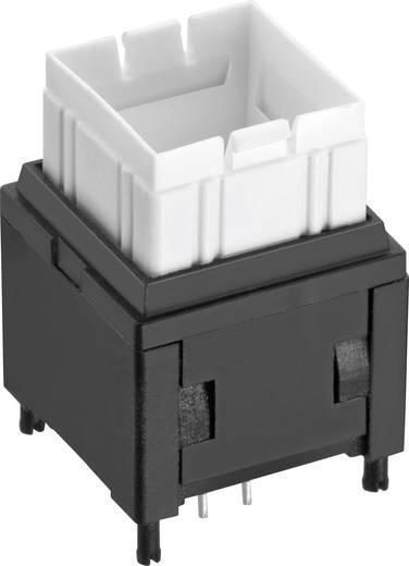 Drucktaster 12 V/DC 0.1 A 1 x Aus/(Ein) Würth Elektronik WS-PBTL 465RG11172501 tastend 1 St.