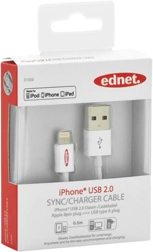 iPad/iPhone/iPod Ladekabel/Datenkabel [1x USB 2.0 Stecker A - 1x Apple Dock-Stecker Lightning] 0.5 m Weiß ednet