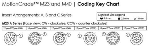 Gerätestecker abgewinkelt Vierkantflansch M23A (Stiftkontakte) Pole: 16 10 A MA1RAP1601 Amphenol 1 St.