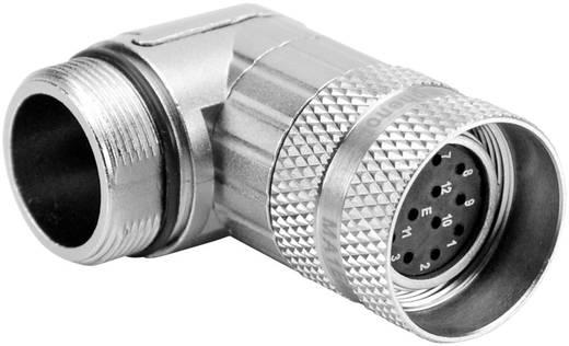 Kabeldose abgewinkelt M23A Pole: 12 10 A MA1EAE1200 Amphenol 1 St.