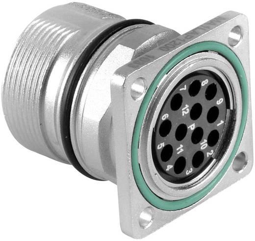 Gerätestecker Vierkantflansch M23A (Stiftkontakte) Pole: 17 10 A MA1LAP1700 Amphenol 1 St.