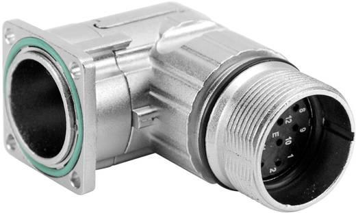 Gerätestecker abgewinkelt Vierkantflansch M23A (Stiftkontakte) Pole: 12 10 A MA1RAE1201 Amphenol 1 St.