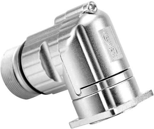 Gerätestecker abgewinkelt Vierkantflansch M23A (Stiftkontakte) Pole: 12 10 A MA1RAP1201 Amphenol 1 St.