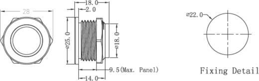 Renkforce 1227548 Klingeltaster beleuchtet, mit Piezo 1fach Edelstahl, Blau 24 V/0,3 A